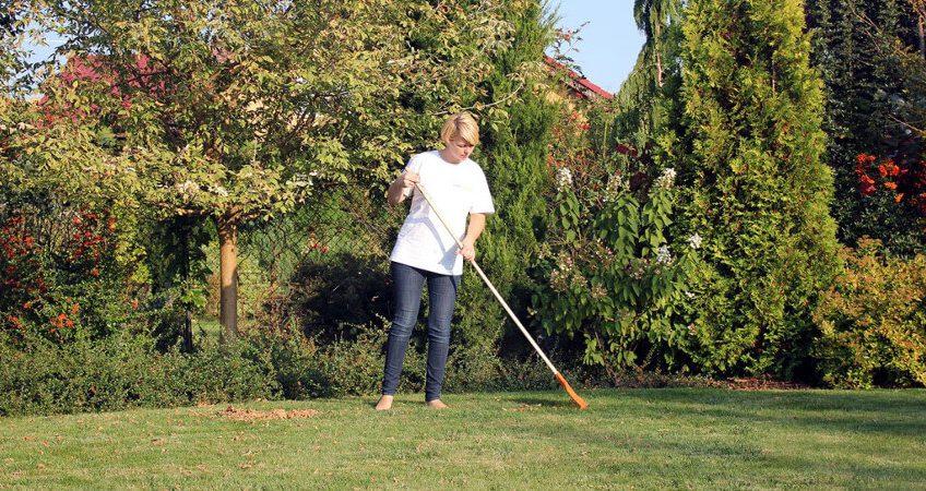 Pielęgnacja trawników - najważniejsze zabiegi