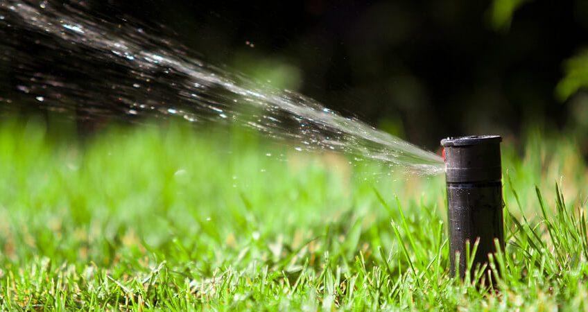 Nawadnianie trawnika - porady ogrodnicze Green Solutions