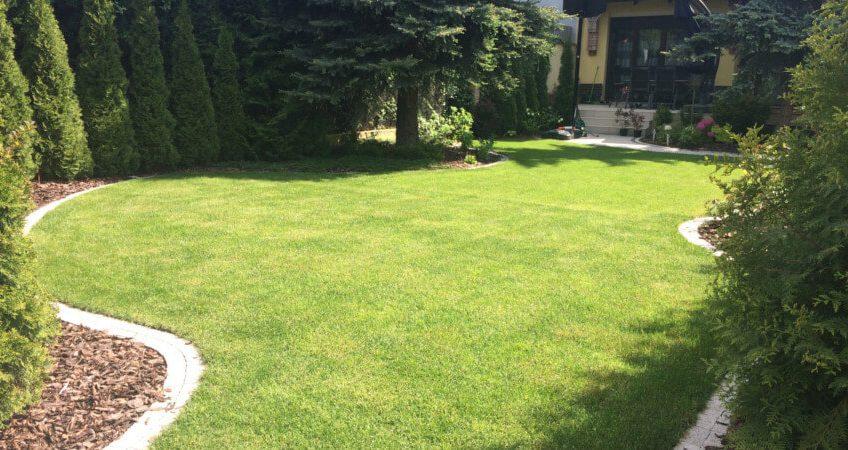 Zakładanie trawników – zasady, o których należy pamiętać