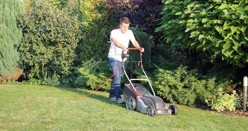 Koszenie trawników - porady ogrodnicze