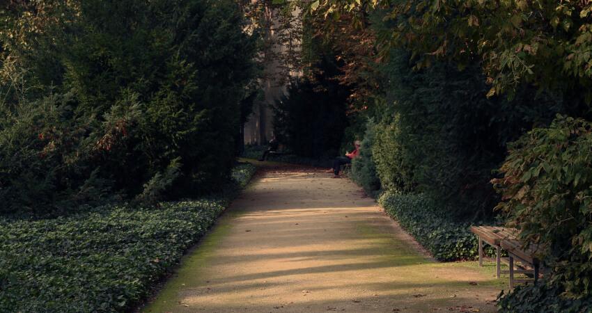 Ogród wstylu angielskim - charakterystyka