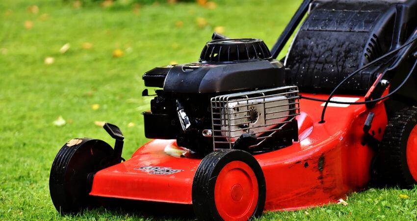 Jak kosić trawnik - koszenie trawy