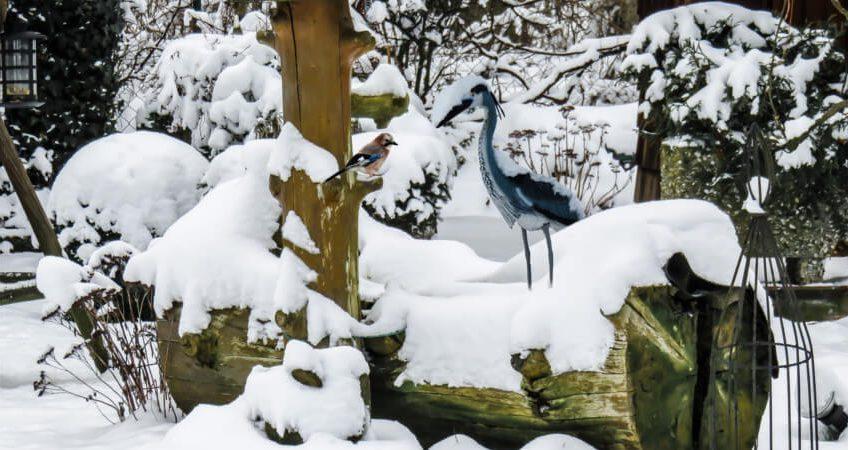 Niezbędne narzędzia do zimowych prac w ogrodzie