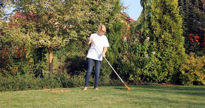 Green Solutions - porządkowanie ogrodu