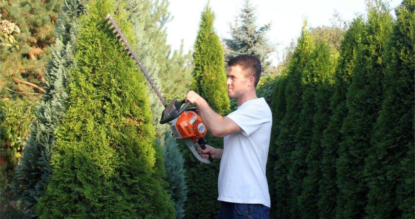 Porządki wiosenne wogrodzie - usługi ogrodnicze
