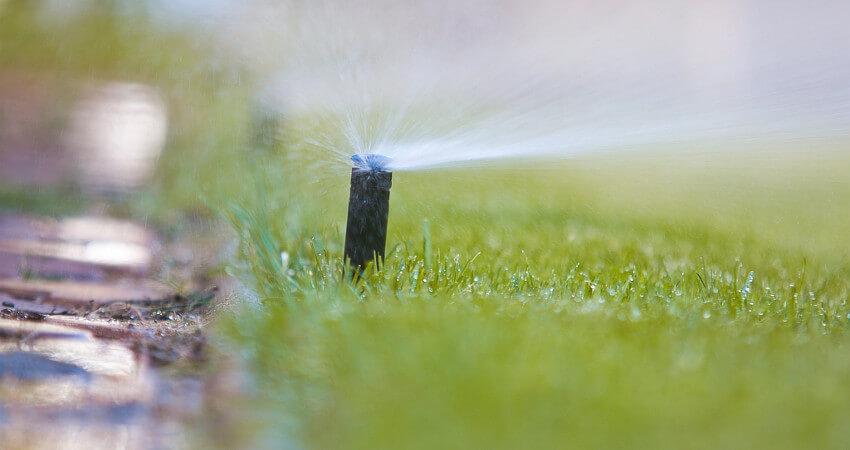 Usługi nawadniania - firma ogrodnicza Green Solutions