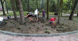 Usługi ogrodnicze - zieleń komercyjna
