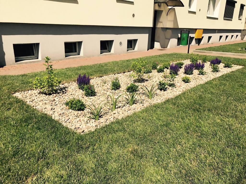 Zakładanie trawników naosiedlach - realizacje