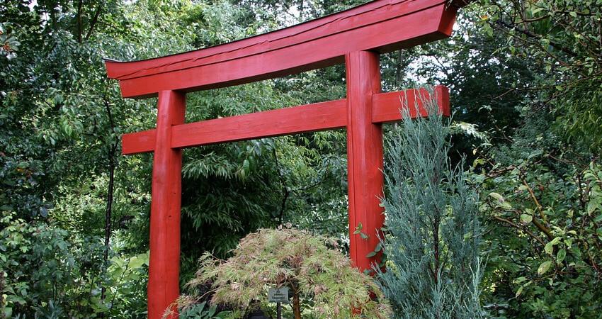 Torii -brama - ogrody japońskie