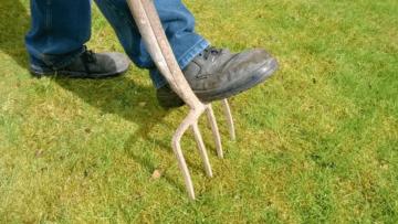 Aeracja trawnika - jak się dotego zabrać