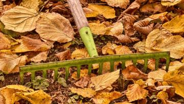 Ogród jesienią - jakie wykonać prace jesienne wogrodzie