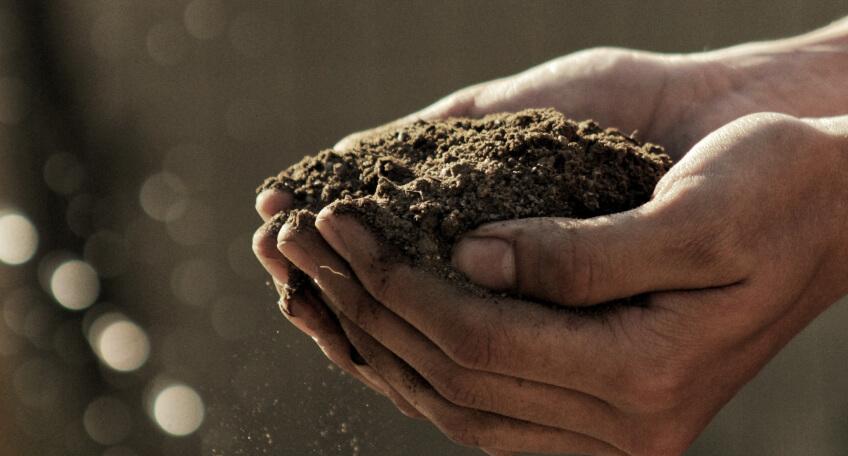 Gleba podogród warzywny