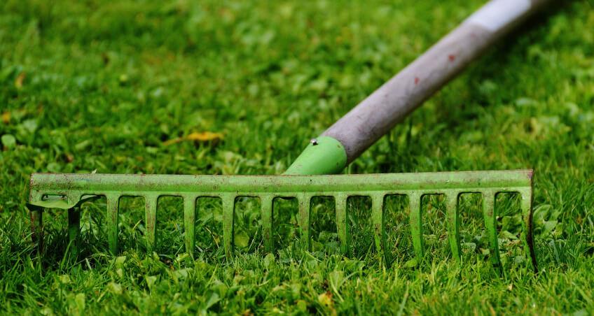 Przygotowanie podnawożenie trawy