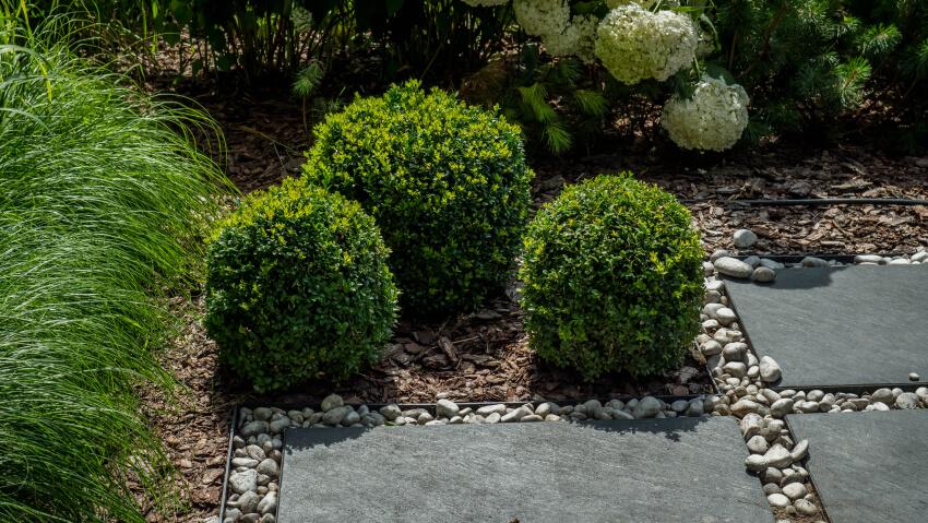 Urządzanie ogrodów - realizacja Green Solutions