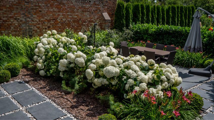 Rabaty kwiatowe - zakładanie ogrodów