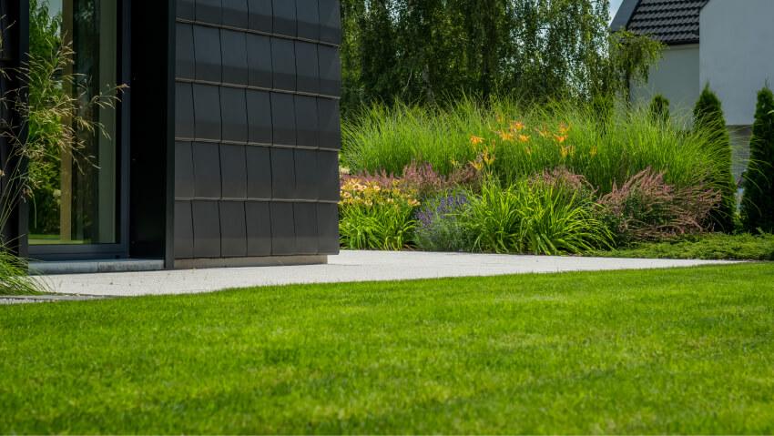 Zakładanie trawnika - realizacja