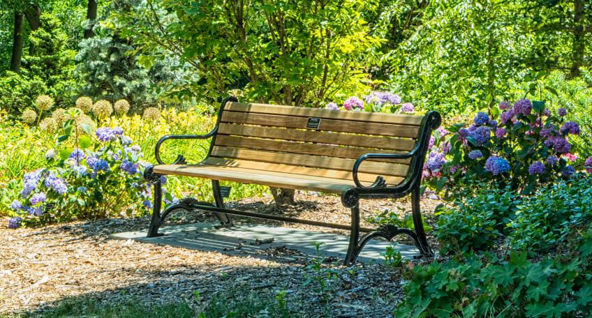 Styl prowansalski - ogród
