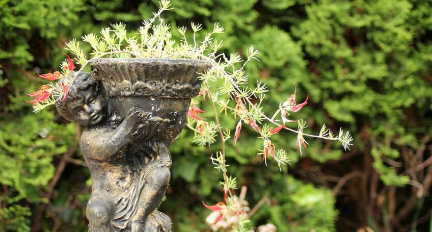 Ogrody wstylu prowansalskim - ozdoby
