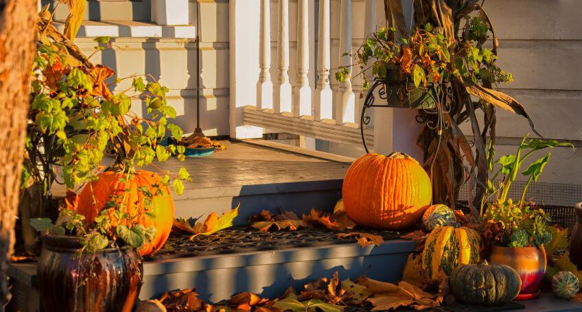 Dekoracje - taras jesienią