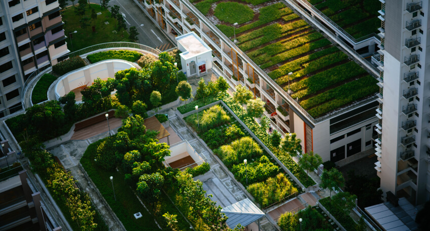 Aranżacja ogrodu nowoczesnego